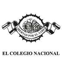 """Las cabezas colosales olmecas - Ciclo de conferencias """"La arqueología hoy"""""""