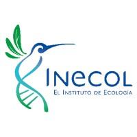 "Curso-taller: ""Principios teóricos y técnicos del cultivo de hongos comestibles (Pleurotus = Seta)"