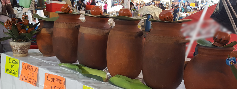 1-HEAD_pulque1518.jpg