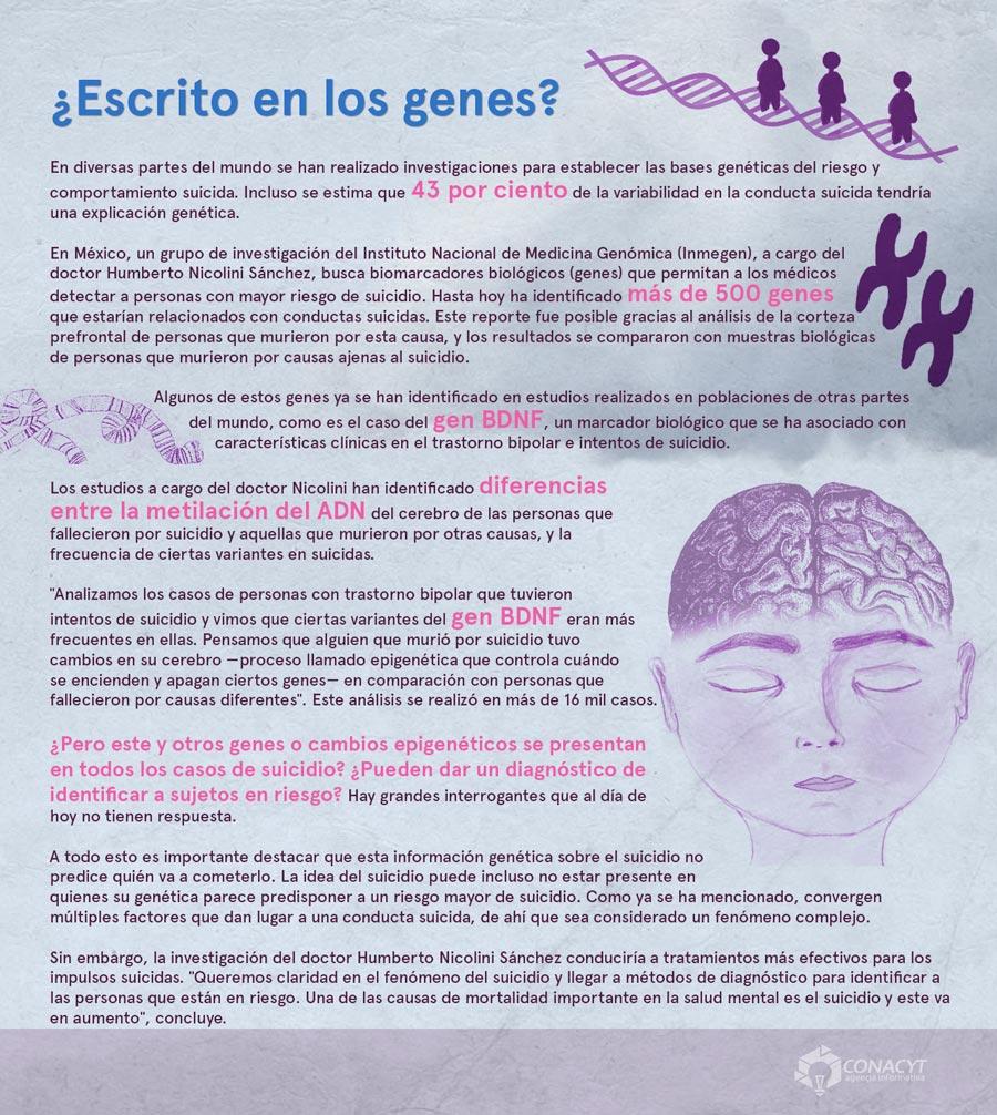 suicidio y genes04